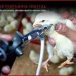 Bacterial vaccines for veterinary use