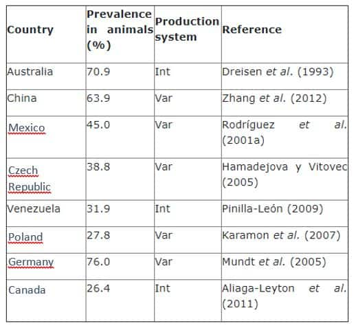 Porcine coccidiosis: Prevalence of Isospora suis in piglets according to the production system