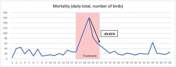 Daily bird mortality. Treatment with Alquermold Natural