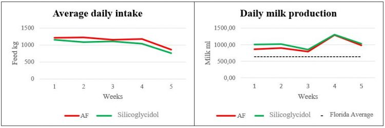 Feed intake and daily milk production