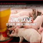 Zinc Oxide. Is there any alternative?