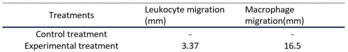 migration of leukocytes and macrophages