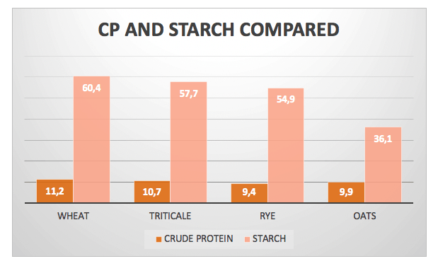 wheat starch, triticale, rye and oats