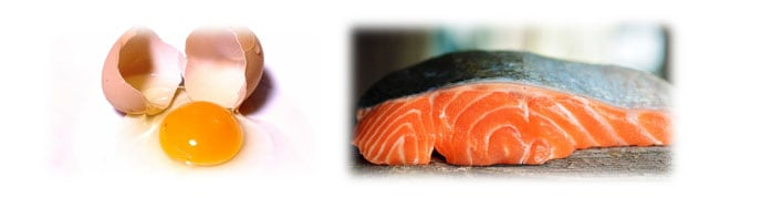 pigments to enhance the color of the egg yolk and salmon