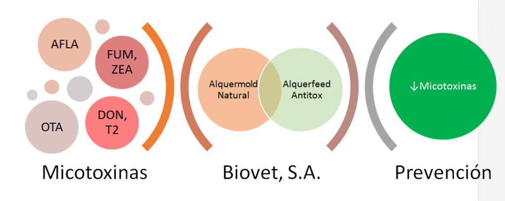 Alquerfeed-Antitox-y-ALquermold-Natural