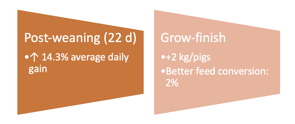Summary of two trials conducted in pigs with intestinal conditioners