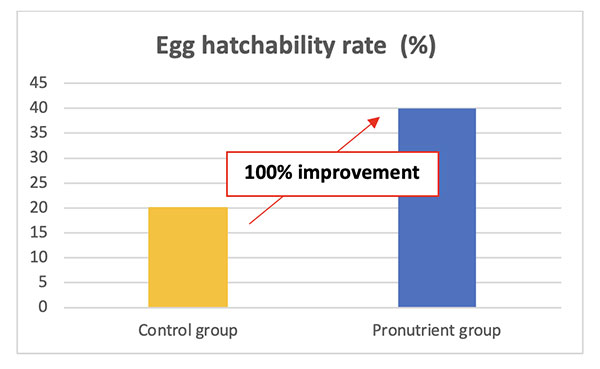 improve egg hatchability rate in rainbow trout