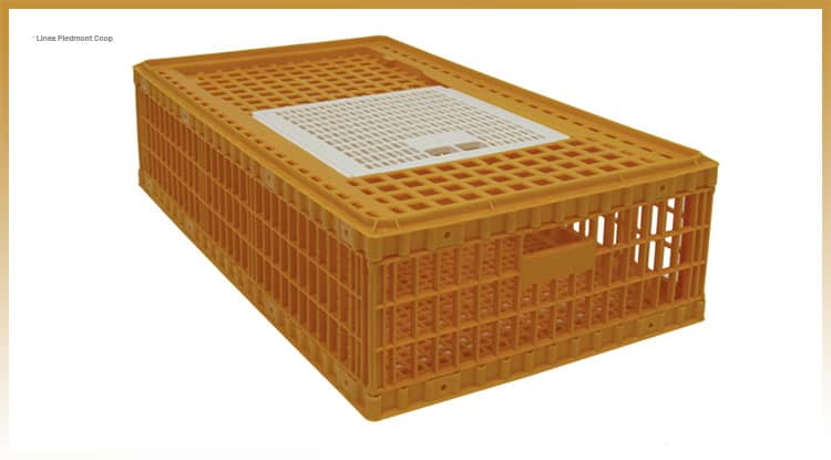 Piedmont Coop model by giordano poultry plast