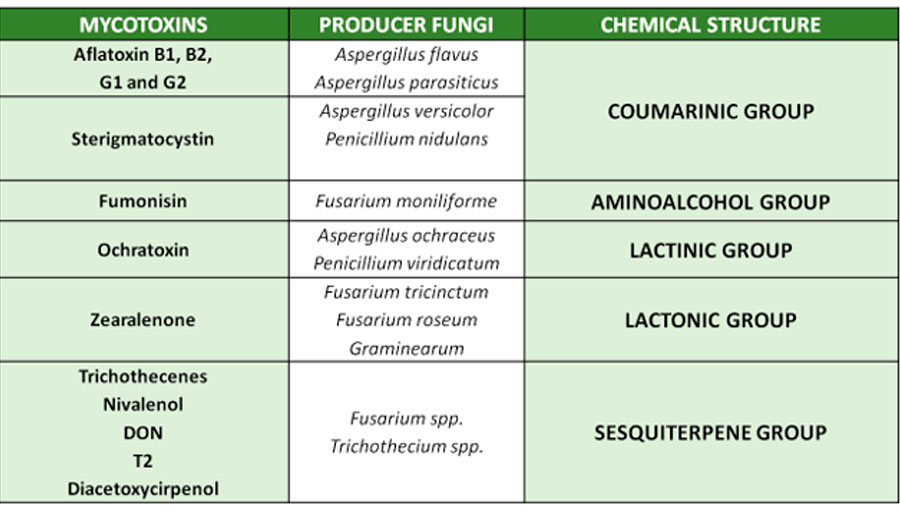 Classification of mycotoxins depending on their chemical composition